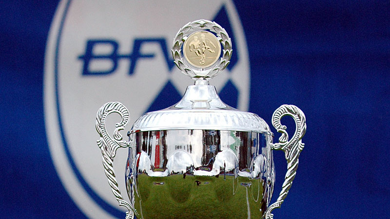 Pokal: Viktoria bietet Live-Stream an